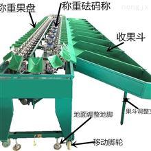 XGJ-SZZ供应纽荷尔脐橙重量分选机 绿橙选果机