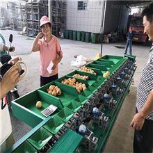 XGJ-Z辽宁岳艳苹果分拣机  选大小的机器