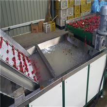 6GFJC-75山西黑金车厘子直径分选机 大樱桃选果机