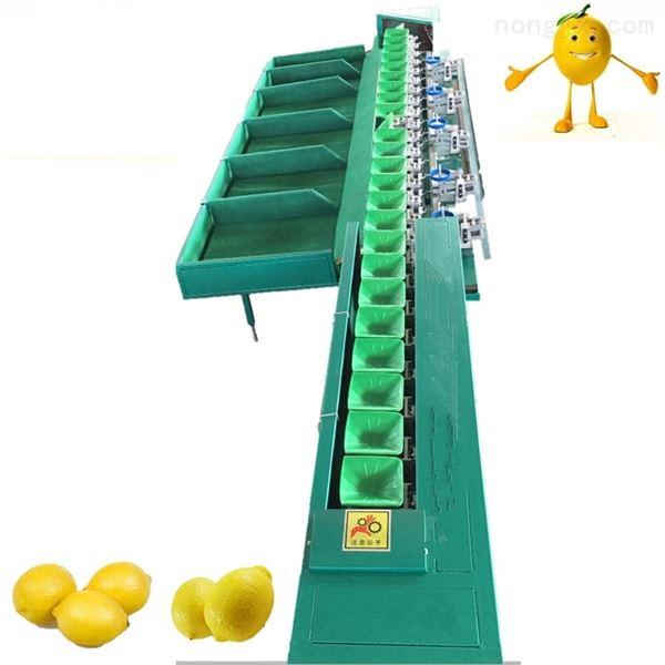 四川资阳柠檬分级机 安岳选大小的机器