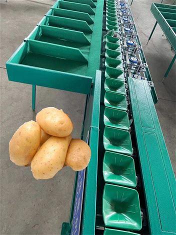 广西百香果选果机分果机 小型水果分级机