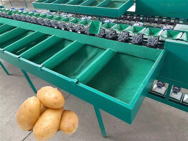 河北石榴选果机 水果重量分选机 分果机