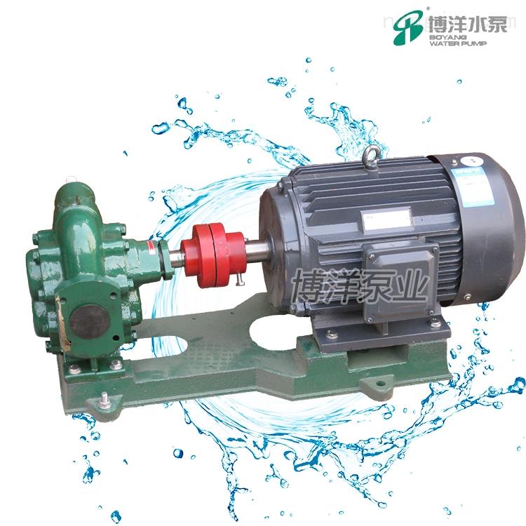 齿轮油泵(普通型)