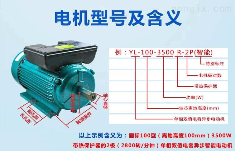 YL-100-3500R-2P(智能电机)型号的含义