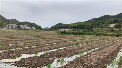 福建省农业农村厅关于漳州联南强环保科技股份有限公司等四家公司企业名称变更的公示
