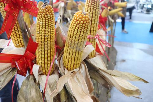 江苏省关于2020年农机购置补贴部分品目内容调整的公示