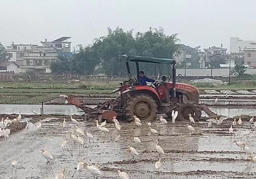 """关于福建省农机使用一线""""土专家""""推荐名录的公示"""