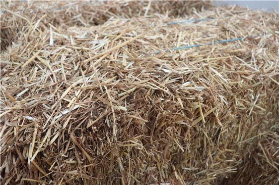 吉林省大力推进保护性耕作,秸秆覆盖还田平均每亩可补助40元