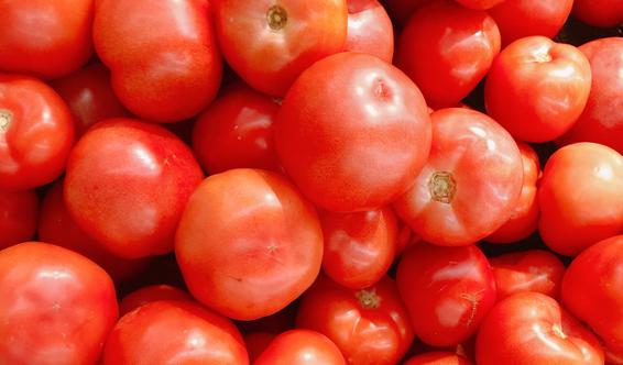 """8月26日:""""農產品批發價格200指數""""比昨天下降0.14個點"""