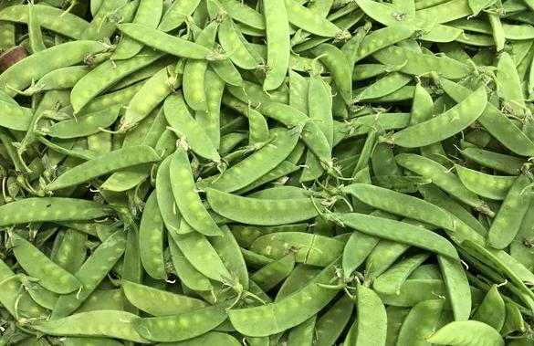 """8月30日:""""农产品批发价格200指数""""比上周五上升0.08个点"""